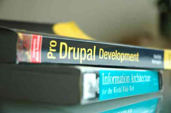 Pro Drupal Development + Information Architecture for the World Wide Web